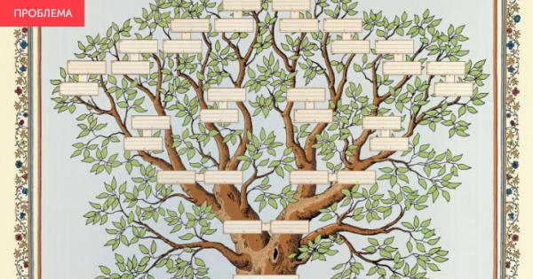 Дерево семьи своими руками нарисовать 164